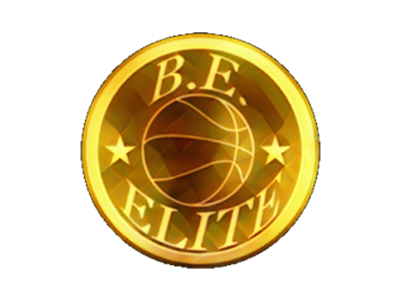 Organization logo for Be Elite
