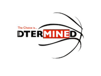 Organization logo for Team D'Termined