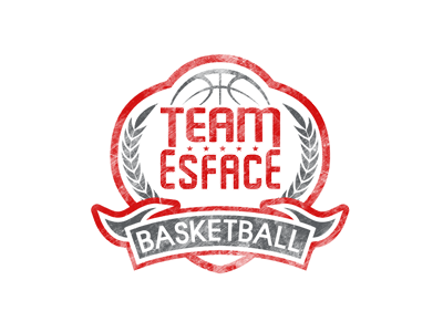 Organization logo for Team Esface