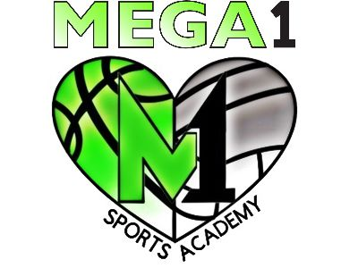 Organization logo for Mega1 Sports Academy