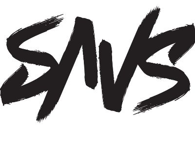Organization logo for TEAM SAVS