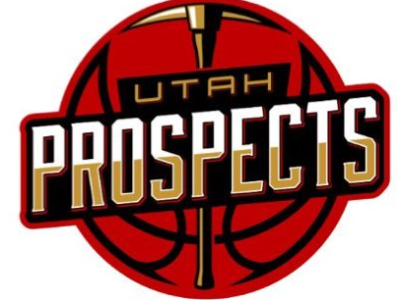 Organization logo for Utah Prospects